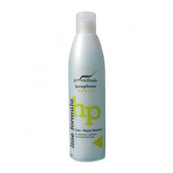 WT-Methode Line formula Color Repair Shampoo Springflower / Шампунь для окрашенных, тонированных и осветленных волос 250 мл
