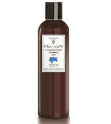 Egomania Richair Intensive Repair Shampoo Vitamin E - Шампунь активное восстановление с витамином Е, 400 мл