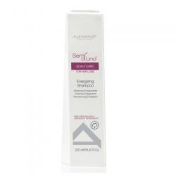 Alfaparf Active Hair Power Energy Shampoo - Шампунь-энергия против выпадения волос (унисекс) 250 мл