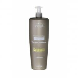 Hair Company Inimitable Style Illuminating Shampoo - Шампунь, придающий блеск, 1000 мл