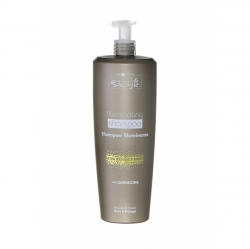 Hair Company Inimitable Style Illuminating Shampoo - Шампунь, придающий блеск, 1000 мл