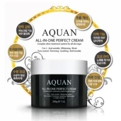 Anskin Aquan All-in-one Perfect Cream - Крем для лица многофункциональный, 200г