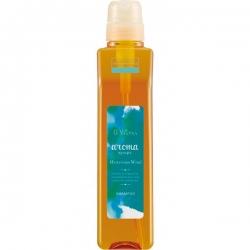 Demi hair seasons aroma syrups mysterious wind shampoo - Шампунь увлажняющий с ароматом эвкалипта 550мл