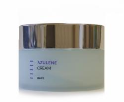 Holy Land Azulen Day Cream - Дневной крем, 250 мл