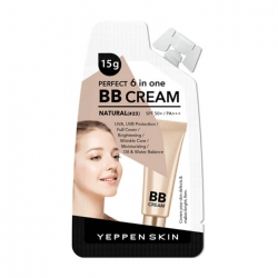 Dermal Yeppen Skin Perfect 6 In One BB Cream Light #23 - ВВ крем, 15 мл