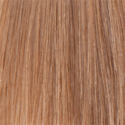 L'Oreal Professionnel Inoa - Краска для волос, 8.13 Светлый блондин пепельный золотистый 60 мл