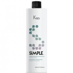 Kezy Moisturizing Shampoo - Шампунь увлажняющий для всех типов волос с пантенолом и бетаином, 1000 мл