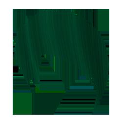 Crazy Color-Renbow Crazy Color Extreme 46 елово-зеленый  100 мл