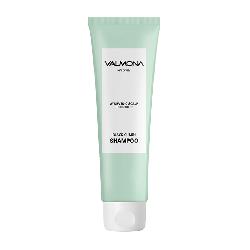 Evas Valmona Ayurvedic Scalp Solution Black Cumin Shampoo - Шампунь для волос Аюрведический, 100мл