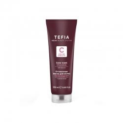 Tefia Color Mask Chocolate - Оттеночная маска для волос с маслом монои Шоколадная, 250 мл